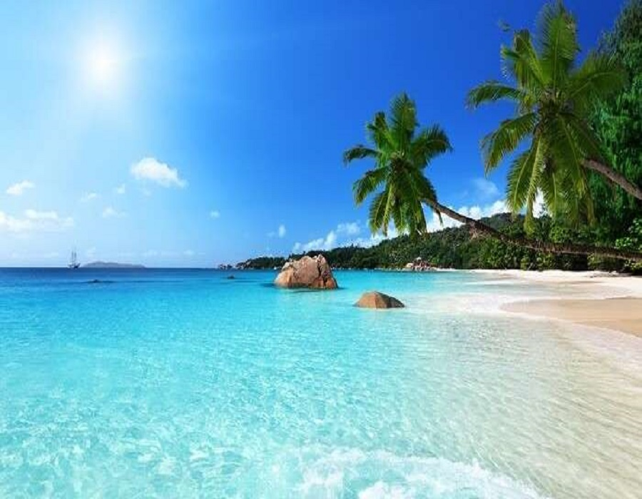 Plan an exotic island trip to Seychelles